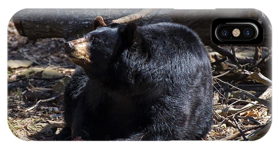 Black Bear IPhone X Case featuring the digital art Black Bear Guarding Food by Chris Flees