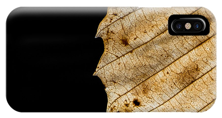 Leaf IPhone X Case featuring the photograph Black Leaf by Jagged North