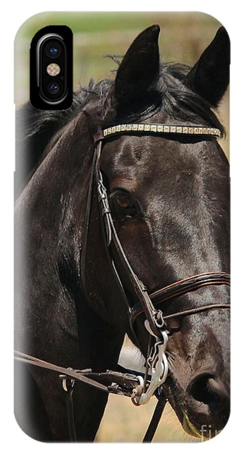 Horse IPhone X Case featuring the photograph Black Mare Portrait by Janice Byer