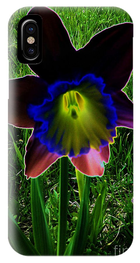 Black Narcissus IPhone X Case featuring the photograph Black Narcissus by Martin Howard