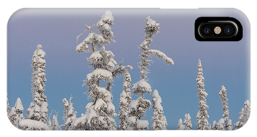 Alaska IPhone X Case featuring the photograph Black Spruce At Twilight by Tim Grams