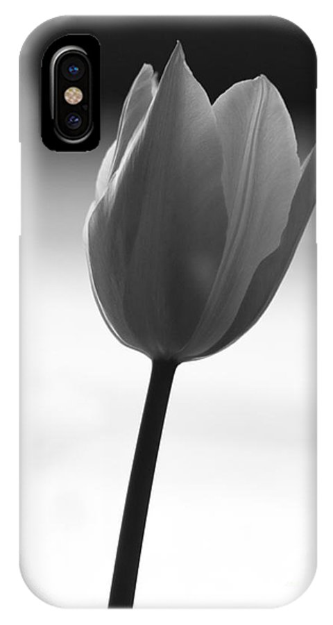Tulip Flower Black And White IPhone X Case featuring the photograph Black Tulip by Carlos Magalhaes