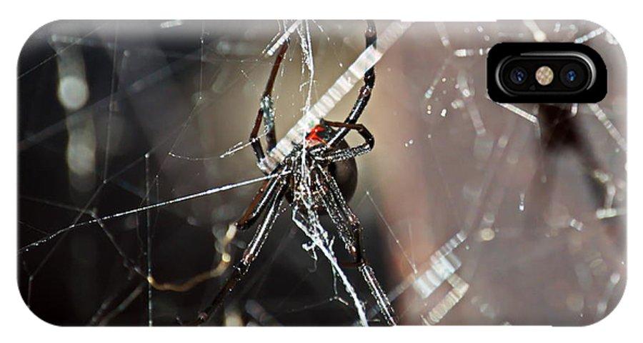 Black Widow IPhone X Case featuring the photograph Black Widow by Christina Ochsner