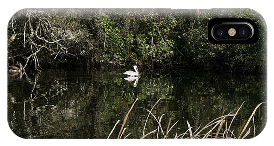 Pelican Swimming IPhone X Case featuring the photograph Blackwater River Pelican by Mechala Matthews