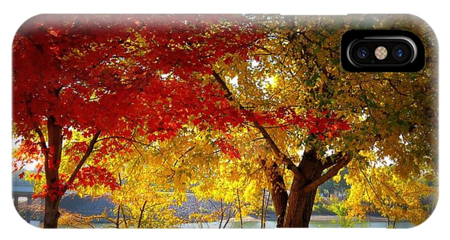 Fall IPhone X Case featuring the photograph Blaze Of Color by Mary Willrodt