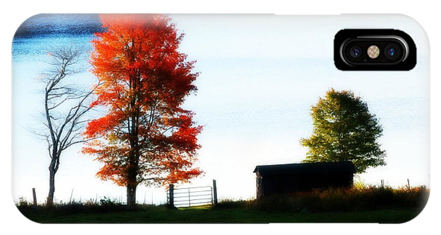 Autumn IPhone X Case featuring the photograph Blaze by Tracy Vartanian