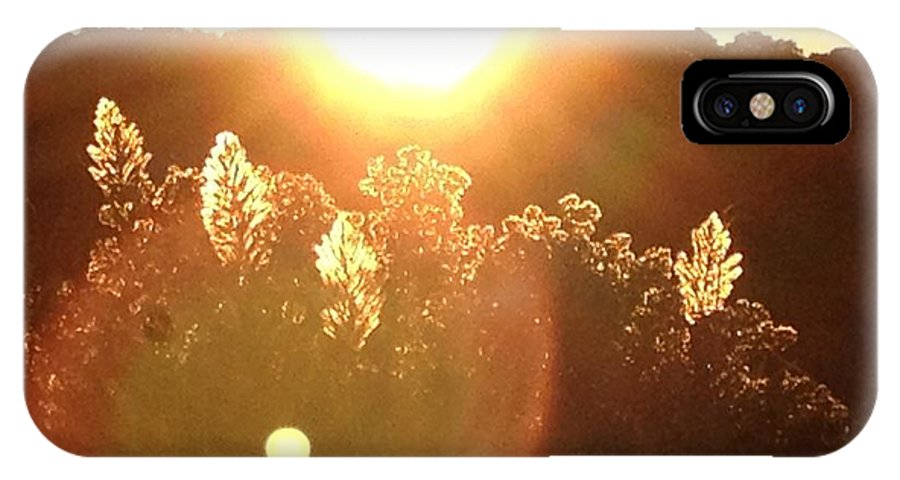 Landscapes IPhone X Case featuring the photograph Blazing Phragmites by John Ebanks