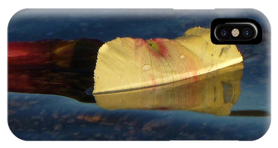 Flower Petal; American River; Rattlesnake Bar; Auburn IPhone X Case featuring the photograph Blossom Rain 15 by Georg Kickinger