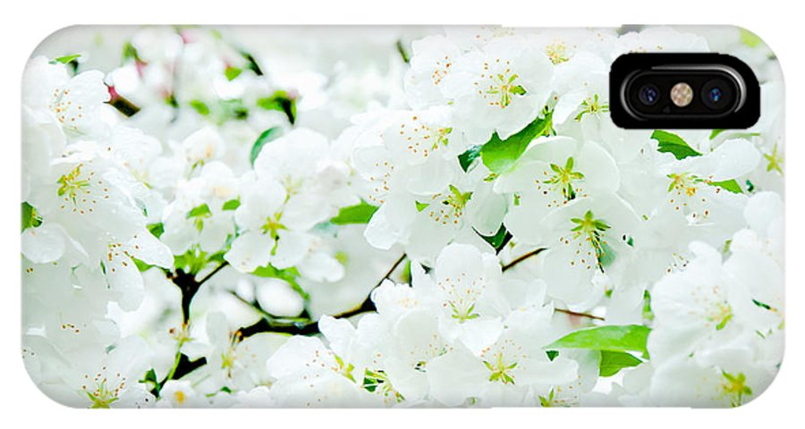 Blossoms IPhone X Case featuring the photograph Blossoms Squared by Greg Fortier