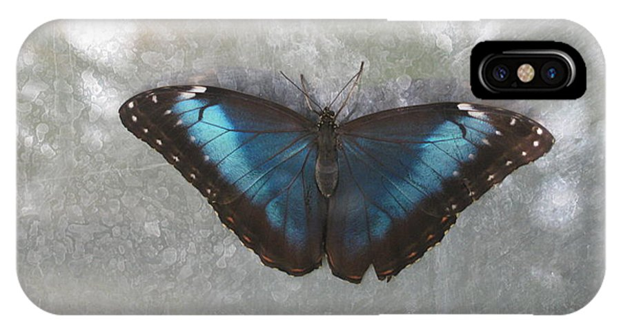 Butterfly IPhone X Case featuring the photograph Blue And Grey by Ronald Lake