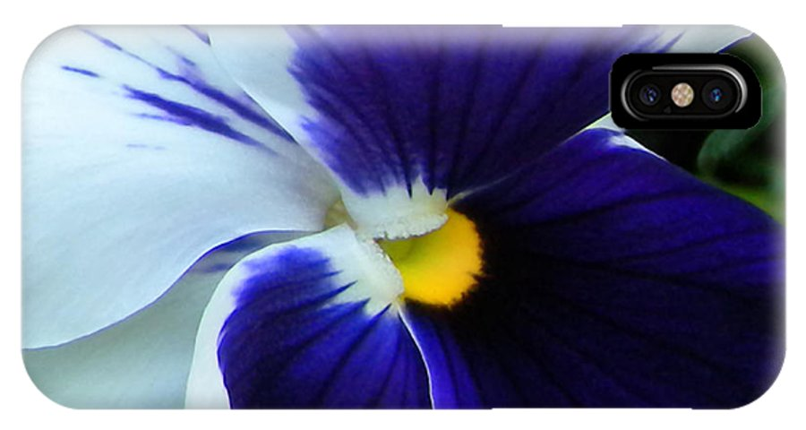 Pansy IPhone X Case featuring the photograph Blue And White Pansy by Brenda Parent
