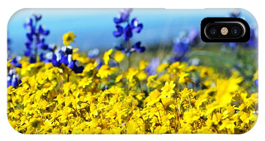 Blue IPhone X Case featuring the photograph Blue And Yellow Wildflowers by Holly Blunkall