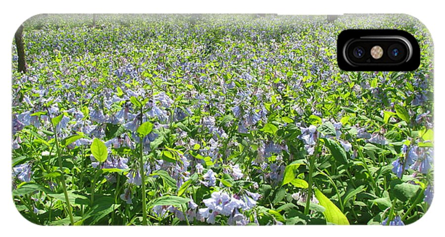 Blue Bells IPhone X / XS Case featuring the photograph Blue Bells by Eric Noa
