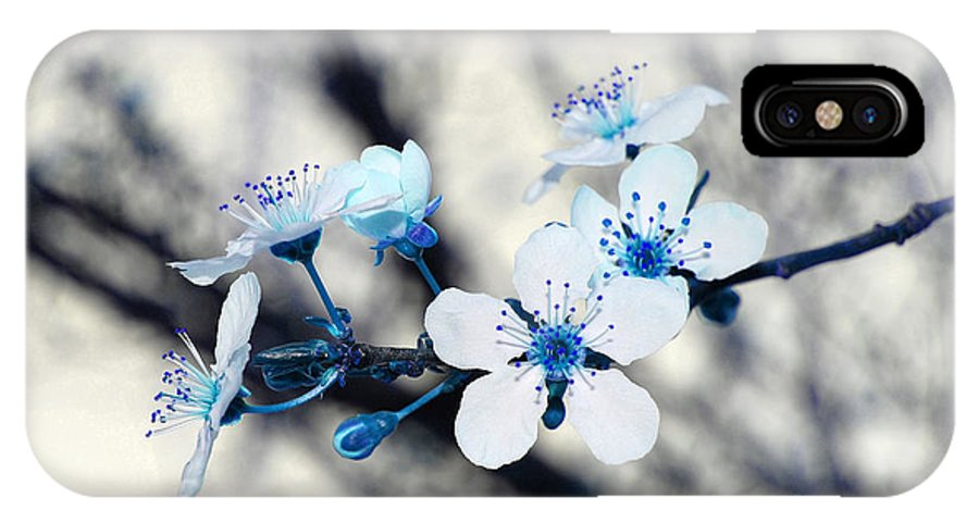 Blossom IPhone X Case featuring the photograph Blue Blossoms by Debra Thompson