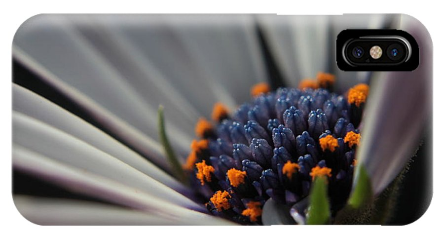 Flower IPhone X Case featuring the photograph Blue Center by Kenny Glotfelty