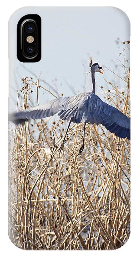 Blue Heron IPhone X Case featuring the photograph Blue Heron by Deb Buchanan