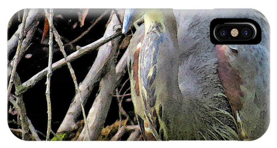 Great Blue Heron IPhone X Case featuring the photograph Blue Heron Greeting by Kathy Johnson