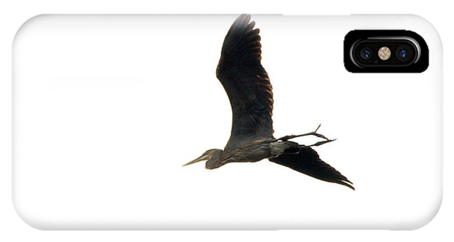 Tulsa Photographs IPhone X Case featuring the photograph Blue Heron Sky by Vernis Maxwell