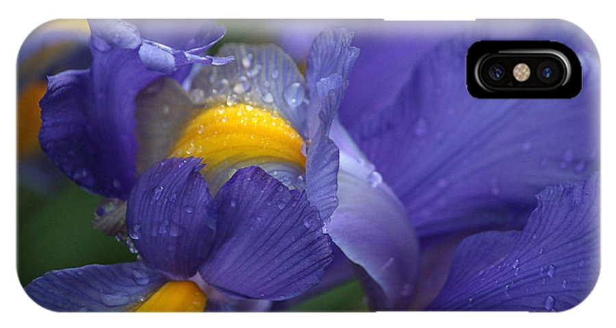 Blue Flowers IPhone X Case featuring the photograph Blue Iris Close Up by Luv Photography
