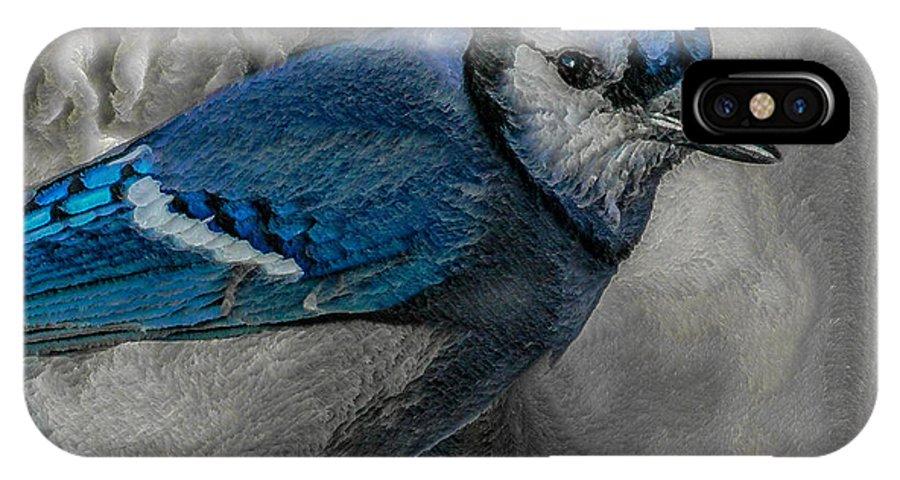 Bird IPhone X Case featuring the digital art Blue Jay Painterly by Ernie Echols
