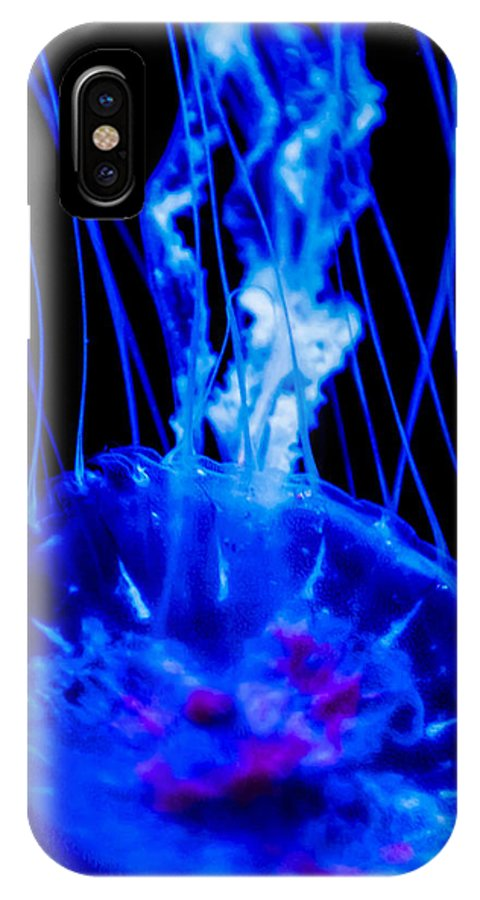 Jelly Fish IPhone X / XS Case featuring the photograph Blue Jelly by David Kelley