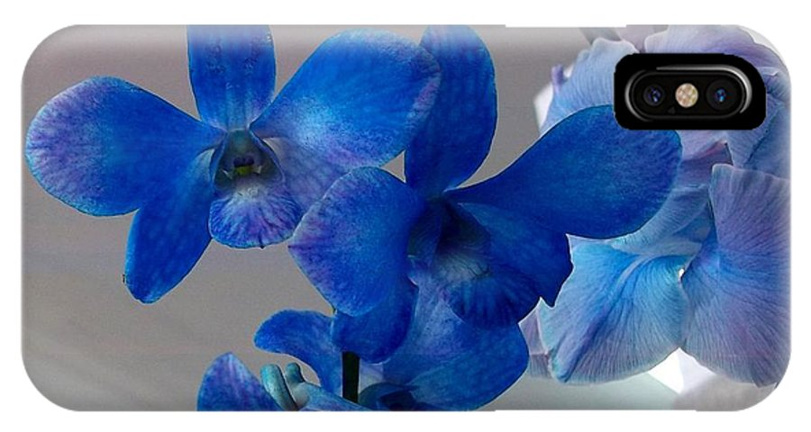 Pink-blue Ribbon Cancer Campaign IPhone X Case featuring the photograph Blue Orchids At All by Vladimir Berrio Lemm