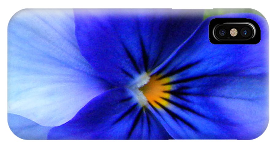 Pansy IPhone X Case featuring the photograph Blue Pansy by Brenda Parent