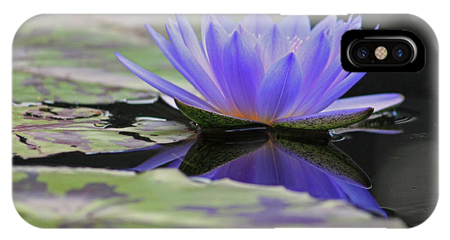 Water IPhone X Case featuring the photograph Blue Purple Dreams by Suzanne Gaff