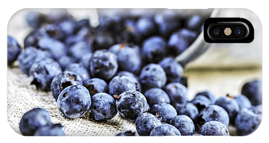 Blueberry IPhone X Case featuring the photograph Blueberries by Elena Elisseeva