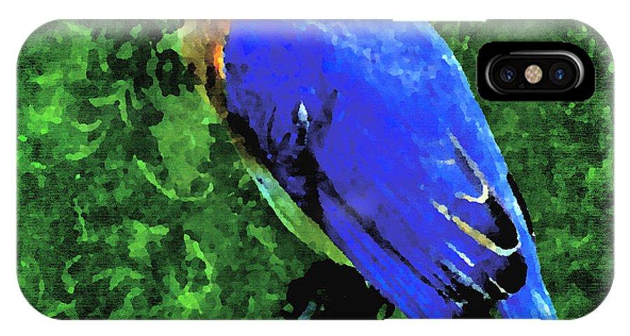 Bluebird. Angelandspot IPhone X Case featuring the digital art Bluebird by Cassie Peters