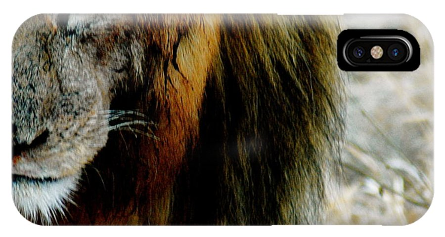 Lion IPhone X Case featuring the photograph Blurred And Bloody by Marc Levine