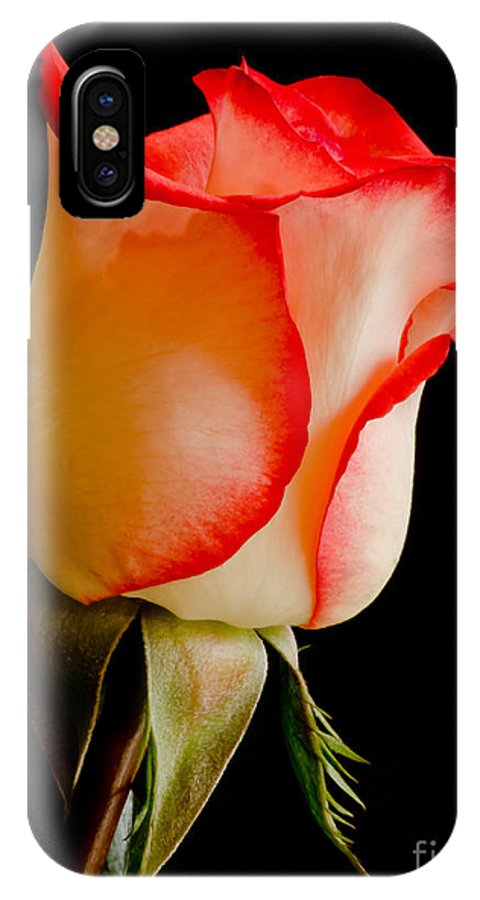 Pacific IPhone X / XS Case featuring the photograph Blushing 2 by Nick Boren