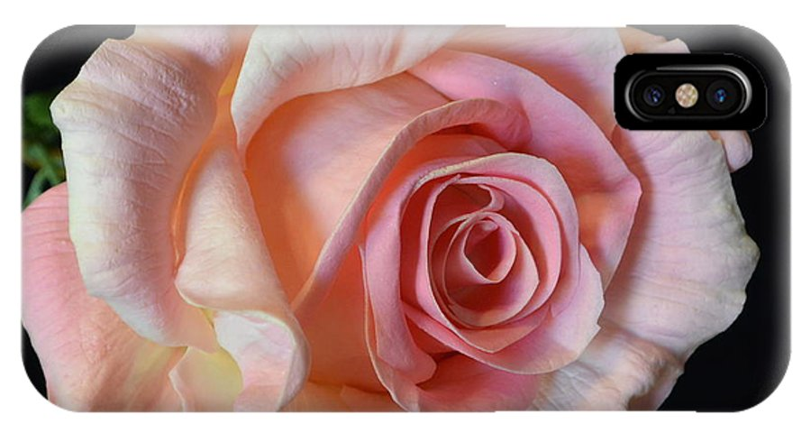 Blushing Pink Rose IPhone X Case featuring the photograph Blushing Pink Rose by Jeannie Rhode