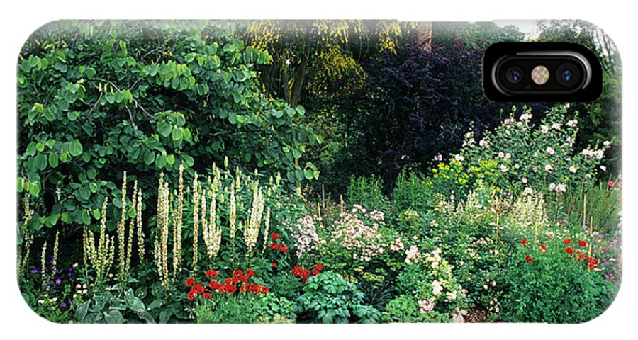 Genista Aetnensis IPhone X Case featuring the photograph Border At A Garden by Duncan Smith/science Photo Library