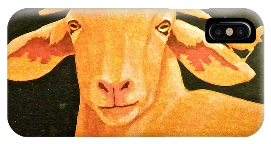 Goat IPhone X / XS Case featuring the painting Boring by John Pinkerton