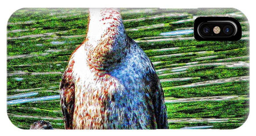 Birds IPhone X Case featuring the photograph Bosom Buddies by Joe Bledsoe
