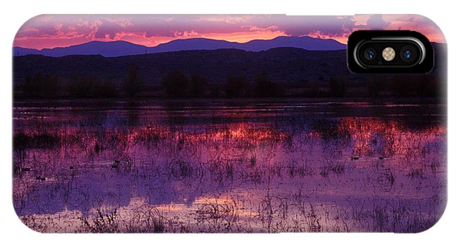Bosque IPhone X Case featuring the photograph Bosque Sunset - Purple by Steven Ralser