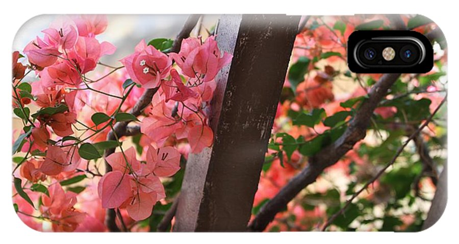 Bougainvillea IPhone X Case featuring the photograph Bougainvillea On Trellis by Audreen Gieger