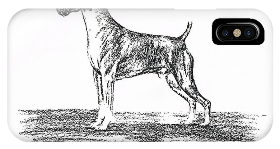 Boxer IPhone X Case featuring the drawing Boxer by Joann Renner