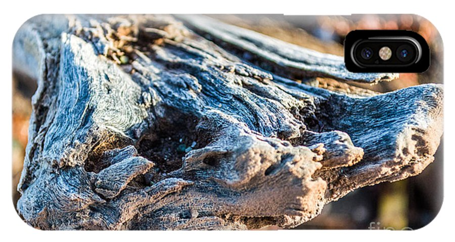 Stick IPhone X Case featuring the photograph Branch by Kenroy Rhoden
