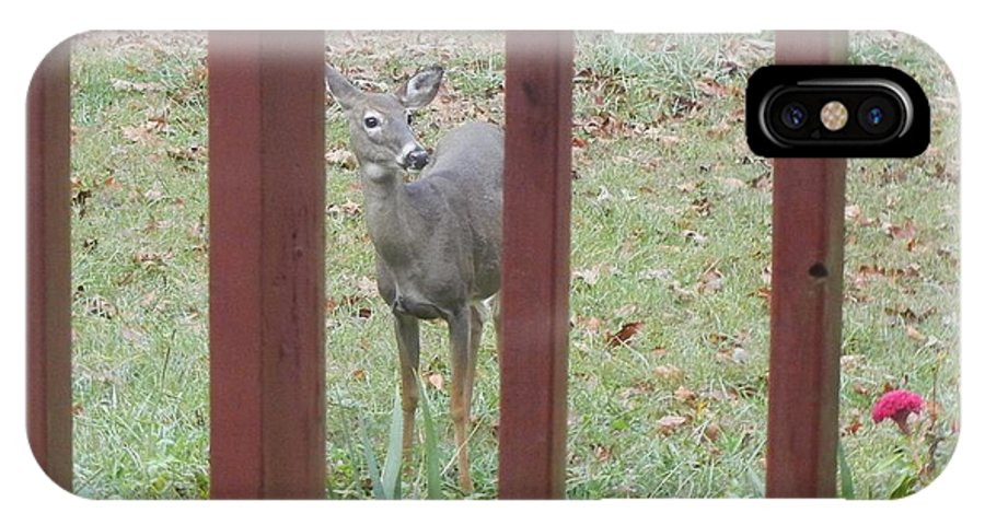Deer IPhone X Case featuring the photograph Breakfast Ready? by Cathy Pierce Payne