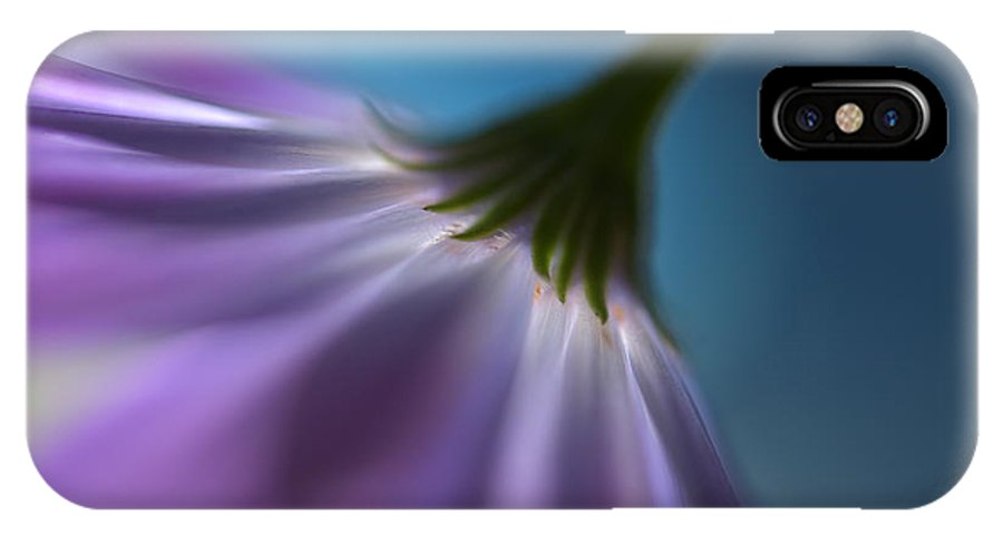 Violet IPhone X Case featuring the photograph Bright Marguerites by Heidi Westum