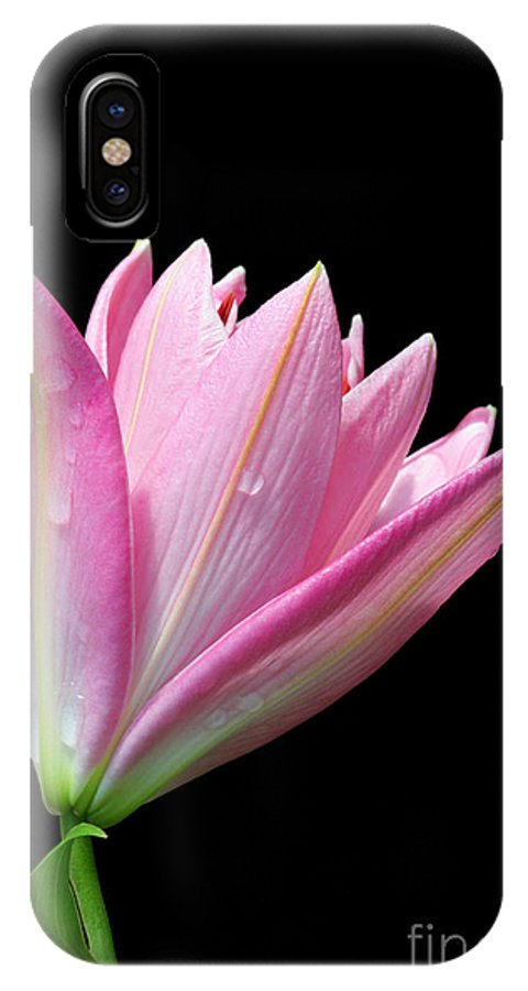 Trumpet Lily IPhone X Case featuring the photograph Bright Pink Trumpet Lily by Judy Whitton