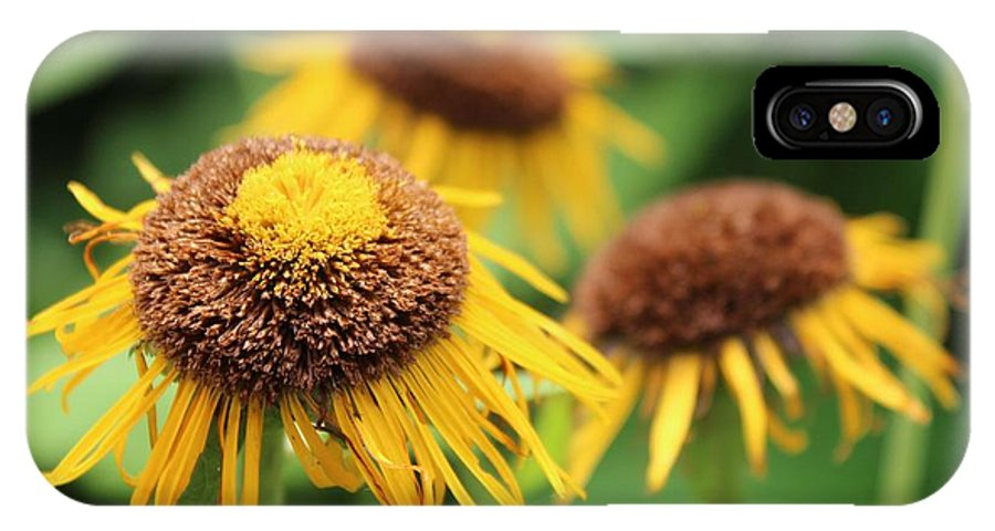 Beautiful IPhone X Case featuring the photograph Bright Yellow Flowers by Bailey Mowser