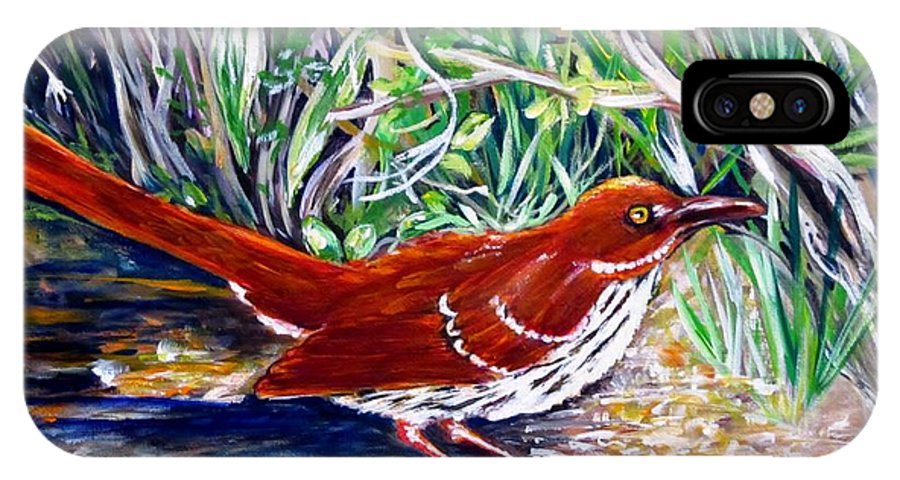 Brown Thrasher IPhone X / XS Case featuring the painting Brown Thrasher In Sunlight by Carol Allen Anfinsen