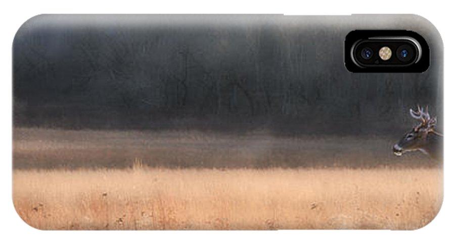 Buck IPhone X Case featuring the photograph Buck Whitetail Deer Crossing Field by Dan Friend