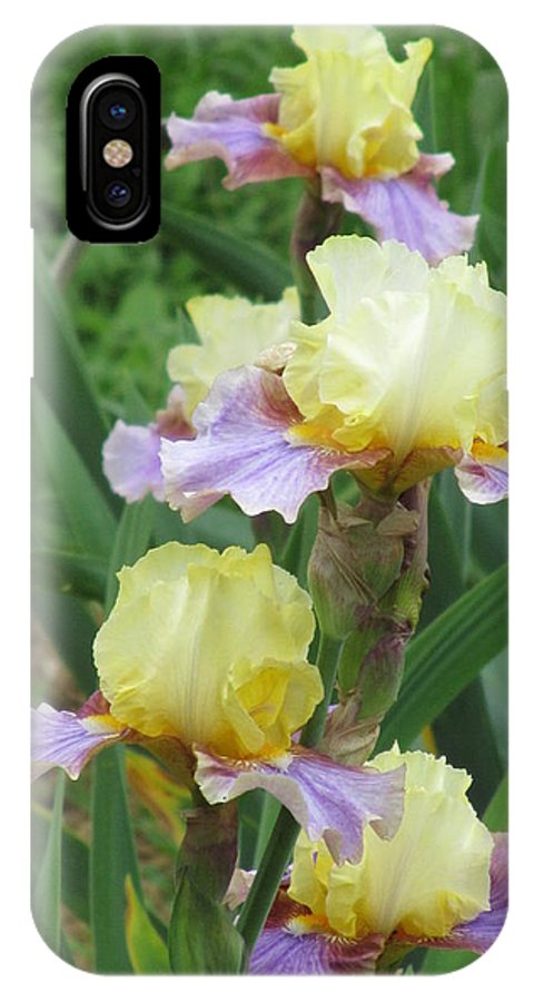 Iris IPhone X Case featuring the photograph Budding Iris by Iris Prints