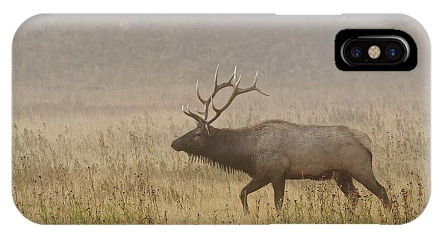 Adam Jones IPhone X Case featuring the photograph Bull Elk On Foggy Morning Along Madison by Adam Jones