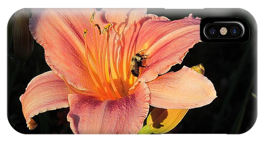 Daylily IPhone X Case featuring the photograph Bumblebee On Daylily by MTBobbins Photography