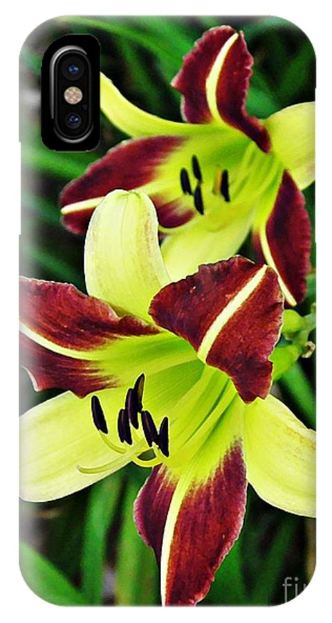 Lily IPhone X Case featuring the photograph Burgundy And Yellow Lilies 2 by Sarah Loft